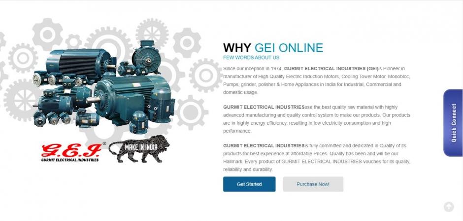 GEI online